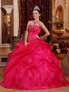 Cute Hot Pink Sweet 16 Dress Strapless Organza Appliques Ball Gown