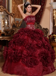 Popular Burgundy Quinceanera Dress Strapless Organza Appliques Ball Gown