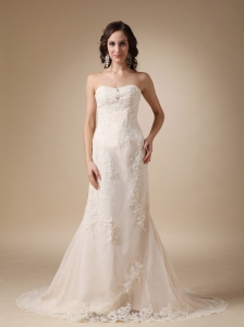 Wonderful Column Sweetheart Court Train Lace Wedding Dress