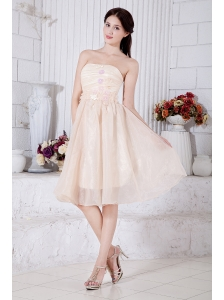 Champagne A-line / Princess Strapless Short Prom / Homecoming Dress Organza Appliques Knee-length