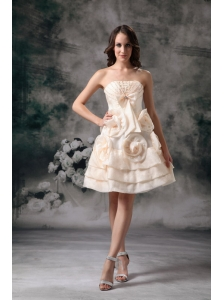 Elegant Champagne Strapless Short Prom / Homecoming Dress Mini-length Organza