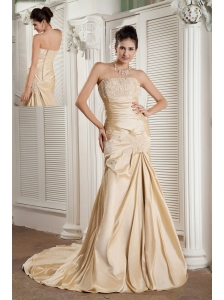 New Champagne A-line Strapless Prom / Evening Dress Satin Appliques Court Train