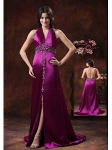 2013 New Style Hot In Willcox Arizona High Slit Prom Dress With Fushsia Haler Brush Train Beaded Decorate On Satin
