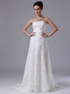 Carroll Iowa Bowknot Column Strapless Hall Exquisite Wedding Dress With Lace