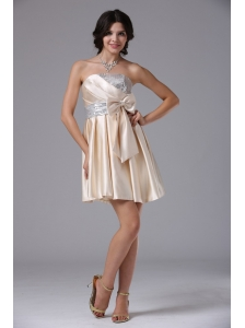 Champagne Custom Made For 2013 Short Prom Dress With Bowknot and Sequin InBig Bear Lake California