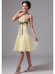 Light Yellow A-line Sash Knee-length Short Prom Dress For Prom Party In Alpharetta Georgia