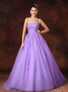 Lilac Sweetheart Tulle Appliques Court Train Custom Made Wedding Dress For 2013