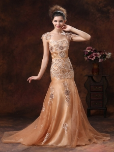 Brown Embroidery Square 2013 Prom Dress With Organza