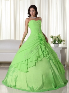 Spring Green Ball Gown Sweetheart Floor-length Chiffon Beading Quinceanera Dress
