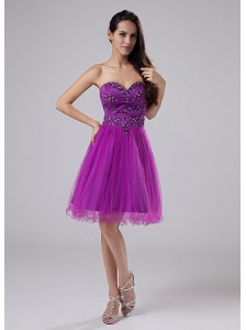 Purple Sexy Prom Dress With Beaded Decorate Sweetheart Organza In 2013