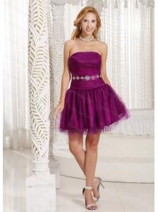 Purple A-line Tulle Beading Dama Dress 2013