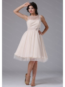 Champagne Hand Made Flowers Bateau Short Dama Dress