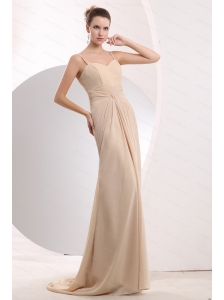 Champagne Spaghetti Straps Chiffon Dama Dress With Brush Train