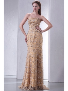 Unique Brush Train Column Prom Dress with Lace and Beading