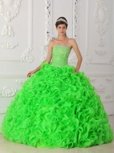Spring Green Ball Gown Strapless Organza Beading 2013 Quinceanera Dresses with Ruffles
