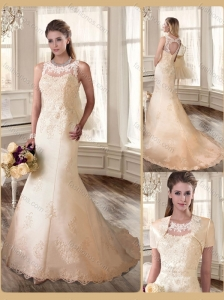 Beautiful Scoop Champagne Wedding Dresses with Appliques 2016