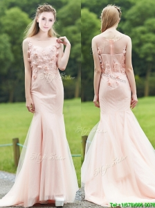 Luxurious See Through Light Pink Mermaid Mother of the Bride Dresses  with Brush Train