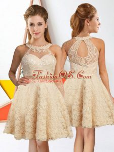 Stunning A-line Bridesmaid Dresses Champagne Halter Top Lace Sleeveless Knee Length Zipper