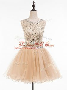 Tulle Scoop Sleeveless Side Zipper Beading Prom Dresses in Champagne