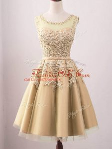 Flirting Sleeveless Tulle Knee Length Lace Up Dama Dress in Gold with Lace