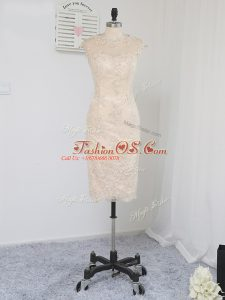 Inexpensive Champagne Scoop Neckline Lace and Appliques Mother Of The Bride Dress Sleeveless Zipper
