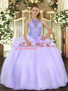 Organza Sleeveless Floor Length Sweet 16 Dresses and Beading