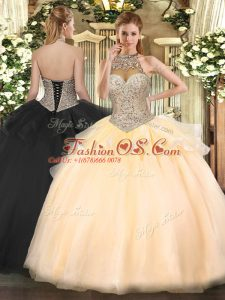 Cute Sleeveless Beading Lace Up 15 Quinceanera Dress