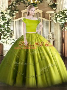 Olive Green Tulle Zipper Quince Ball Gowns Short Sleeves Floor Length Appliques