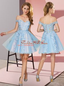 Nice Sleeveless Tulle Mini Length Zipper Quinceanera Court Dresses in Light Blue with Appliques