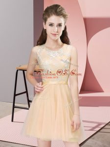 Scoop Sleeveless Side Zipper Wedding Guest Dresses Champagne Tulle