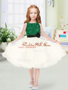 Knee Length A-line Sleeveless Champagne Flower Girl Dress Zipper