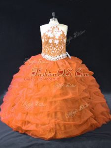 Ball Gowns Quinceanera Gowns Orange Halter Top Organza Sleeveless Floor Length Backless
