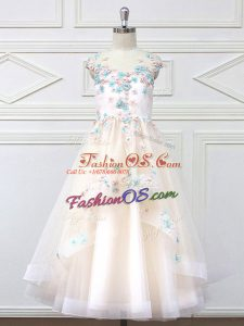 High Class Champagne A-line Scoop Sleeveless Tulle Floor Length Zipper Appliques Flower Girl Dresses
