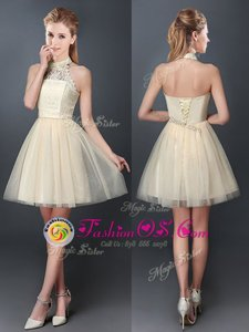 Low Price Tulle Halter Top Sleeveless Lace Up Lace and Appliques Quinceanera Court Dresses in Champagne