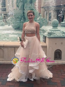 Sleeveless Floor Length Ruffles Zipper Prom Gown with Watermelon Red and Rose Pink