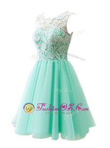 Cheap A-line Homecoming Dress Apple Green Scoop Tulle Sleeveless Knee Length Clasp Handle