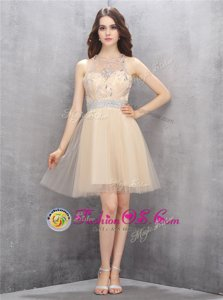 Gorgeous Scoop Tulle Sleeveless Knee Length and Beading