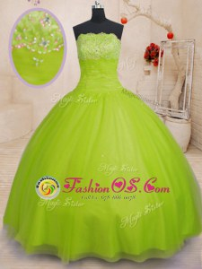 Fitting Sleeveless Beading Lace Up Quinceanera Gowns