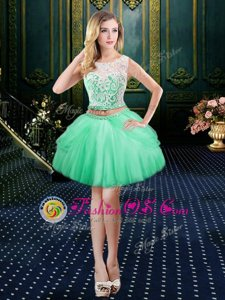 Scoop Sleeveless Clasp Handle Dress for Prom Apple Green Tulle