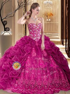Organza Sleeveless Sweet 16 Quinceanera Dress Court Train and Embroidery and Pick Ups