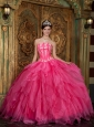Gorgeous Hot Pink Quinceanera Dress Strapless  Appliques Organza Ball Gown