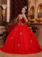 Luxurious Red Quinceanera Dress Sweetheart Organza Appliques Ball Gown