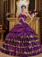 Popular Purple Quinceanera Dress One Shoulder Taffeta and Leopard Appliques Ball Gown