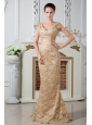 Champagne Column V-neck  Lace and Embroidery Mother Of The Bride Dress Brush Train Satin