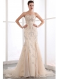 Champagne Mermaid Strapless Prom Dress Organza Sequins Court Train