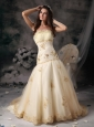 Customize A-Line / Princess Wedding Dress Strapless Organza Embroidery Brush Train