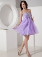 Beautiful Lilac A-Line / Princess Sweetheart Homecoming Dress Organza Beading Mini-length