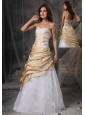 Sweet Champagne and White Sweetheart Prom   Dress Appliques Floor-length