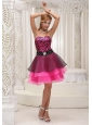 Hot Pink and Black Prom / Cocktail Dress For 2013 Zebra and Organza Beaded Decorate Waist Mini-length