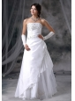 Vinton Iowa Appliques With Beading Decorate Up Bodice Taffeta and Organza Floor-length 2013 Wedding Dress